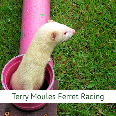 Terry Moules Ferret Racing