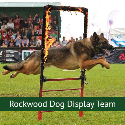 Rockwood Dog Display Team