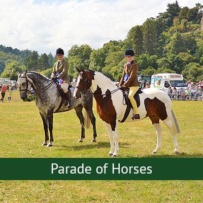 Parade of Horses