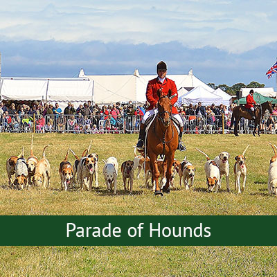 Parade of Hounds