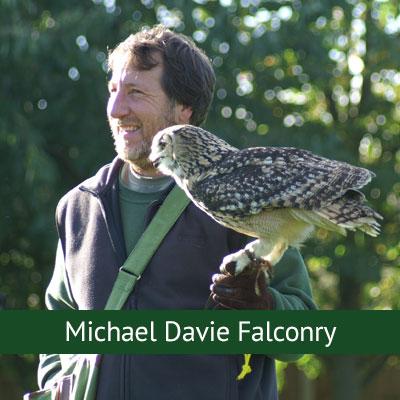 Micheal Davey Falconry